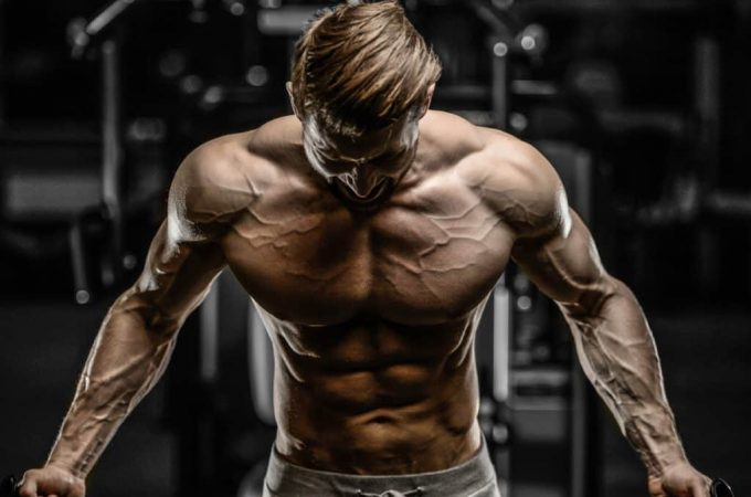 Workout Programs For Men – Learn about the programs